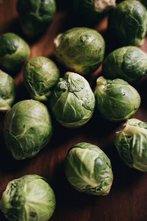 Brussels Sprouts. By Alesia Kozik.